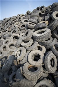 Recycled tires help sick children and horses